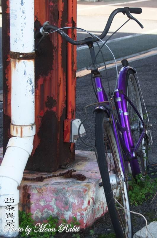 自転車 愛媛県西条市三本松