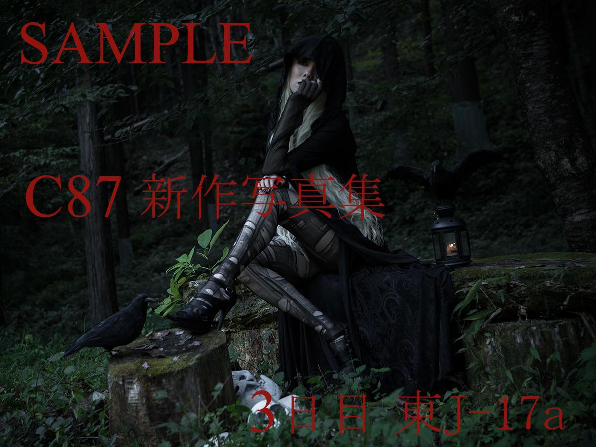 C87_sample_08.jpg