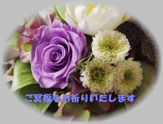 98003757_o1.jpg