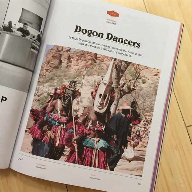DogonBrown-1.jpg