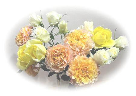 rose_20141226225133c44.jpg