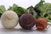 vegetables-838321__180.jpg