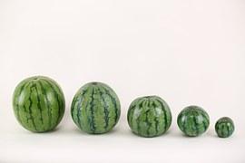 watermelon-715608__180.jpg