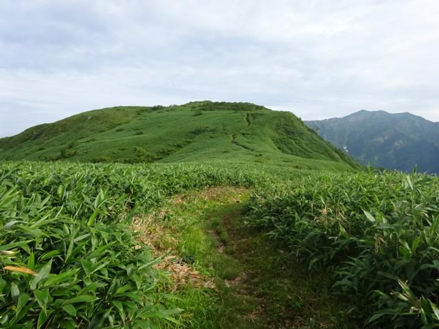 8月11日 銚子ヶ峰