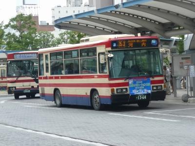 P1100207.jpg