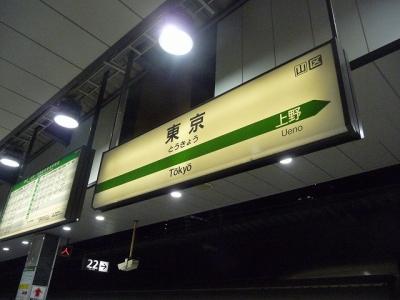 P1100232.jpg