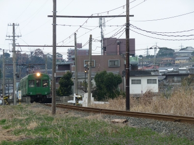 P1110046.jpg