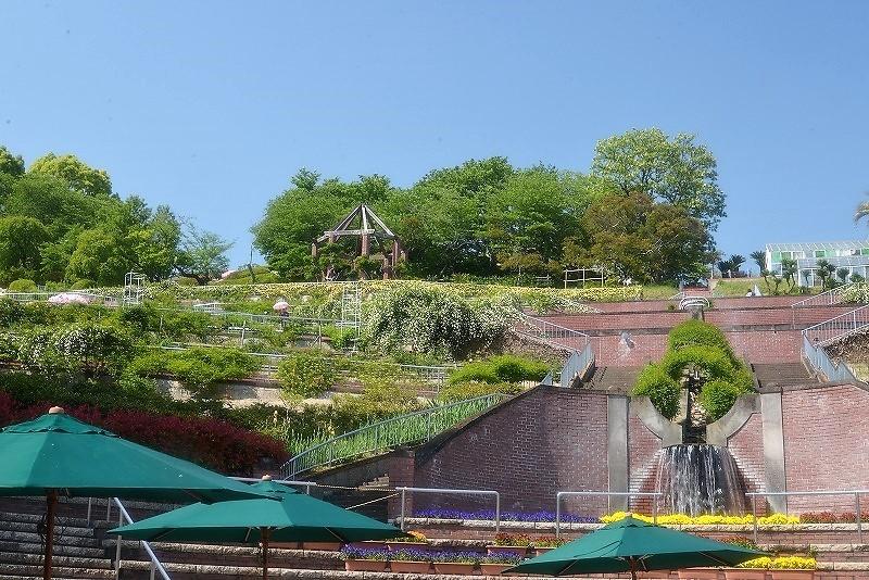 半田山植物園 (36)