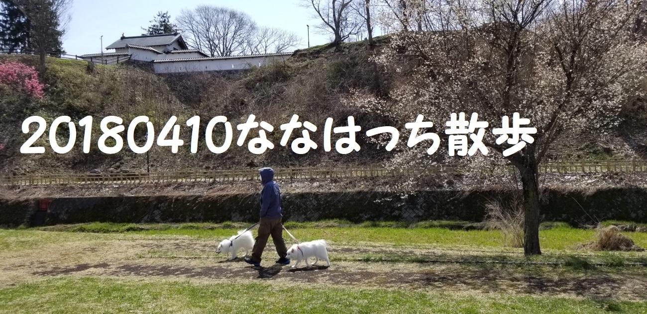 20180410_112545.jpg