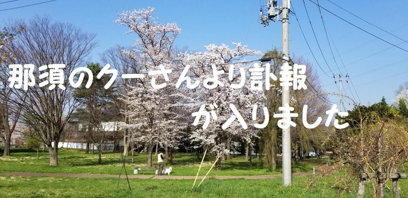 20180421_153227.jpg