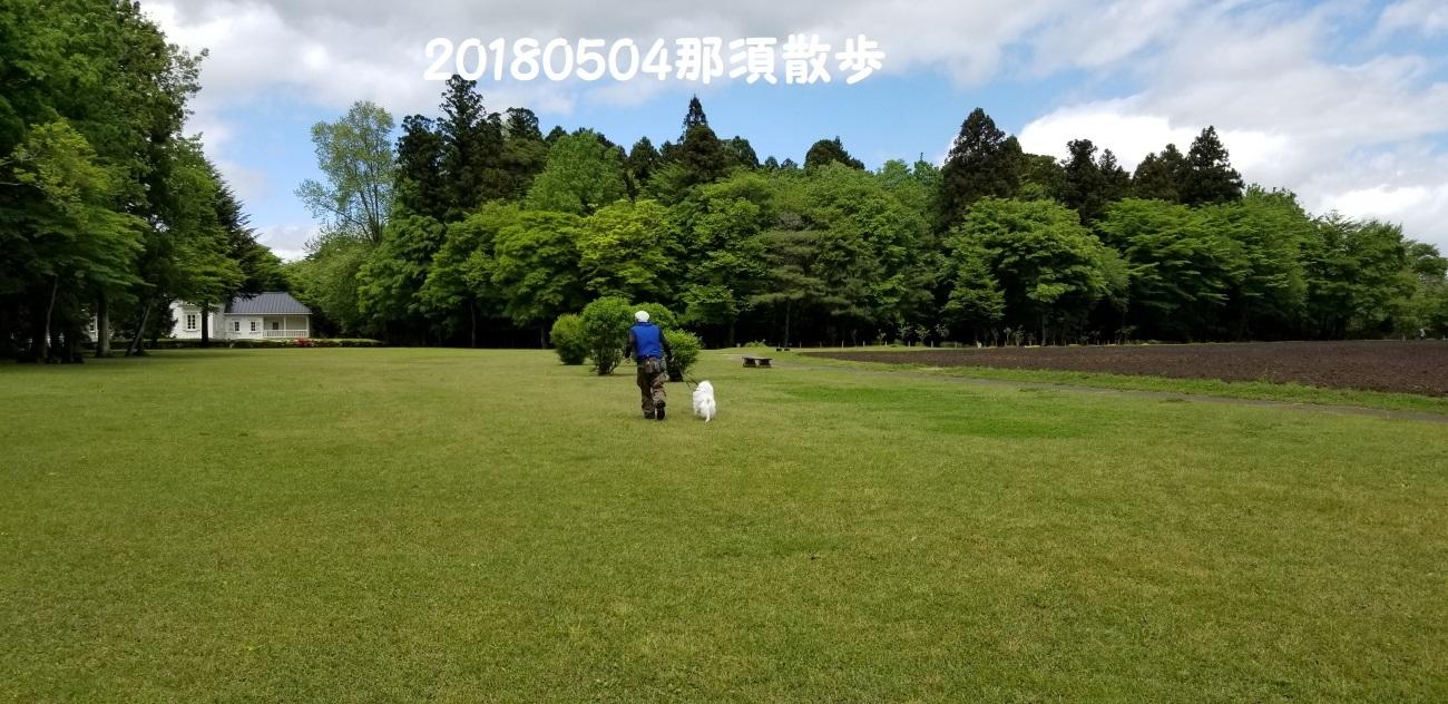 20180504_113548.jpg