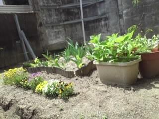 26日のぞみの庭④