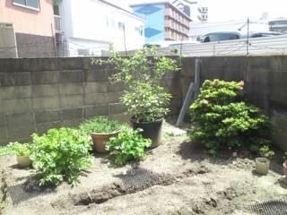 26日のぞみの庭③
