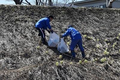 桜並木清掃20180417 (24)