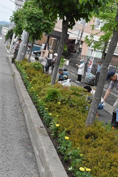 2018-06-03 リタロード植栽 (107)