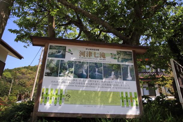 春の旅行 河津七滝201800049532