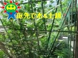 IMG_0109_convert_20180512110515.jpg