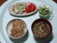 4/24 昼食 ちくわきゅうり、きゅうりとチキンのサラダ、納豆ごはん、脂肪燃焼味噌汁