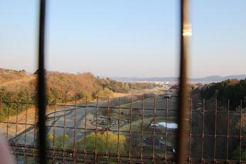 3/25 つり橋からの景色  県立戸川公園