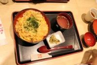 4/7 昼食 奥美濃古地鶏親子丼  岐阜駅で