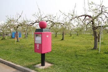5/2 りんごの郵便ポスト   りんご公園  弘前市