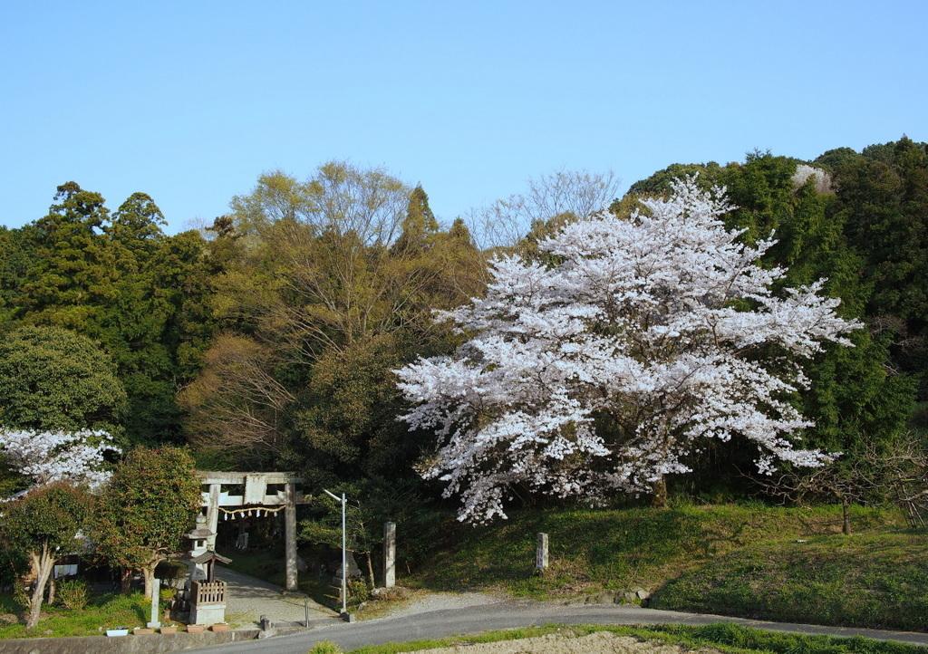 ■ 天香久山(あまのかぐやま)