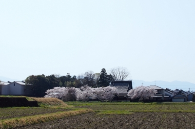 Amano_Kaguyama_1803-905.jpg