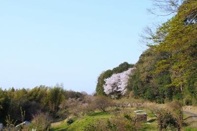 Amano_Kaguyama_1803-913.jpg