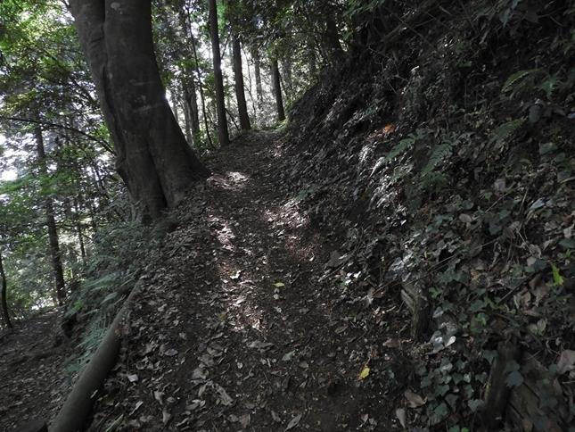 e 登り道