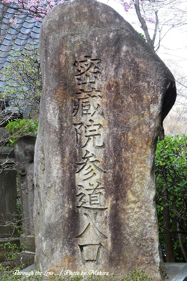 密蔵院参道TZ1
