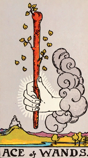 タロットカード『ワンドのエース』 by占いとか魔術とか所蔵画像