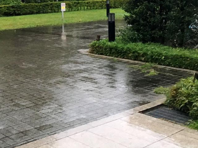 どんより曇りのち雨の東京3@2018年5月31日 by占いとか魔術とか所蔵画像