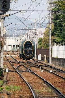2018_kyoto_sakura_15.jpg