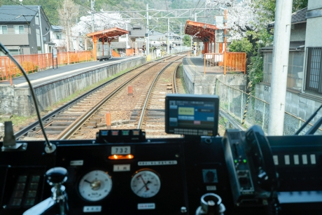 2018_kyoto_sakura_22.jpg