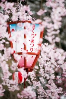 nagoyajyo_20.jpg