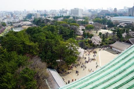 nagoyajyo_9.jpg