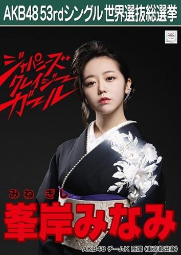 AKB48 53rdシングル 世界選抜総選挙 ポスター 峯岸みなみ