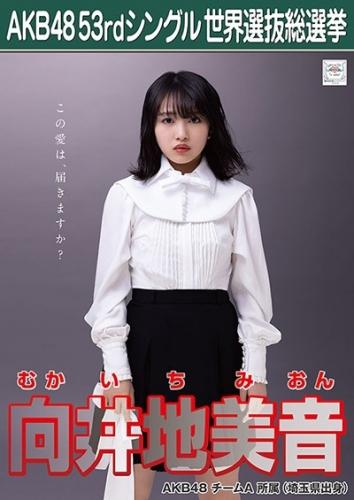 AKB48 53rdシングル 世界選抜総選挙 ポスター 向井地美音