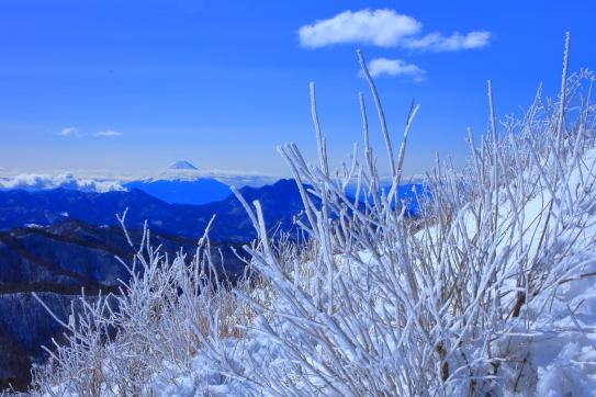 霧氷と霊峰富士山