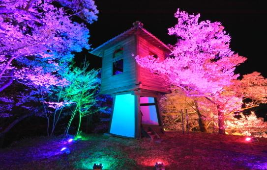 太鼓櫓を彩る夜桜