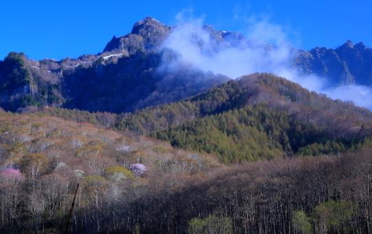早春の戸隠山にガス流れる