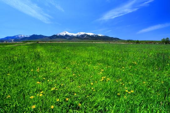 草原に浮かぶ八ヶ岳と雲