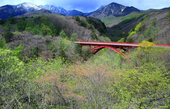 新緑輝く赤い橋