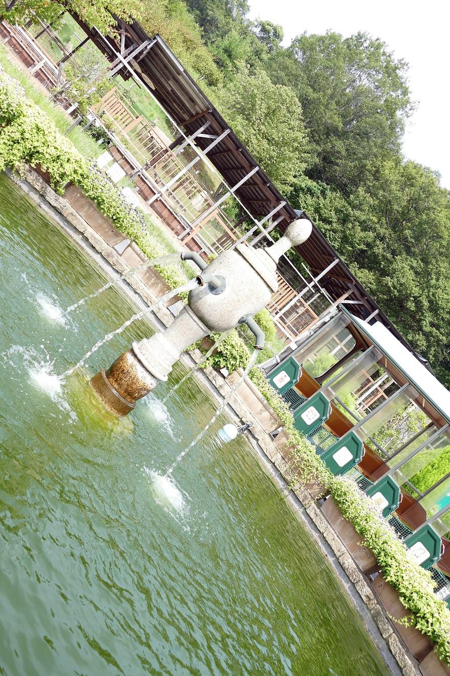 堺・緑のミュージアム (5)