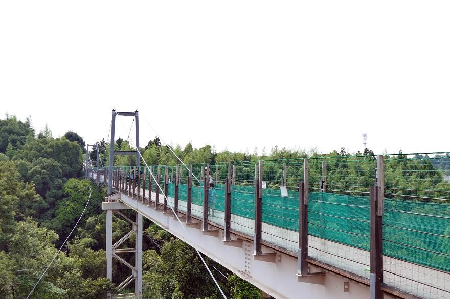 堺・緑のミュージアム (11)
