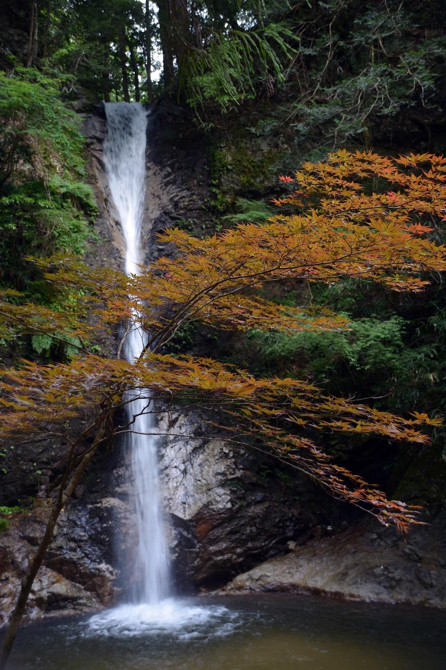 投石の滝 (10)