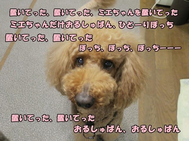 IMG_071520180505.jpg