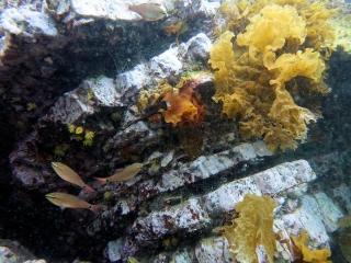 5_海底の地層