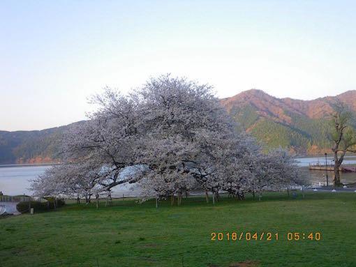 180421-4.jpg
