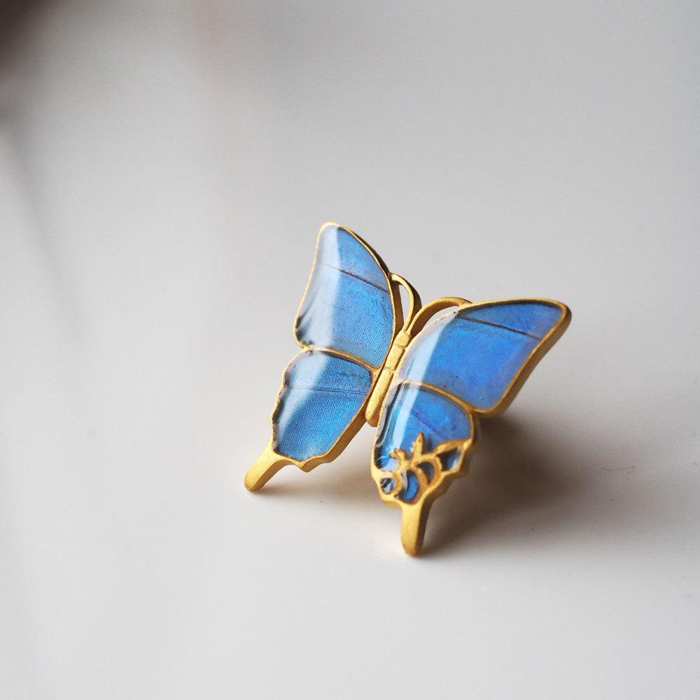 こんな雨の日はモルフォ蝶